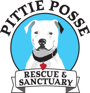 PittieParty_Logo_color_nobkgnd